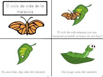 Essay starters spanish